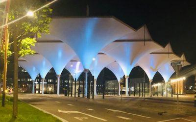 Maak kennis met onze taxi in Leidsche Rijn
